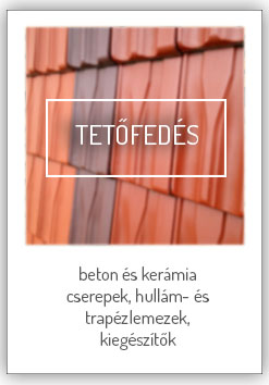 02_tetofedes